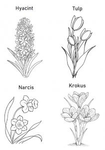 Kleurplaat voorjaarsbloemen